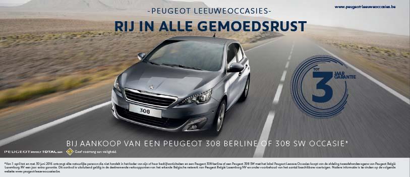 Peugeot Leeuwe occasies